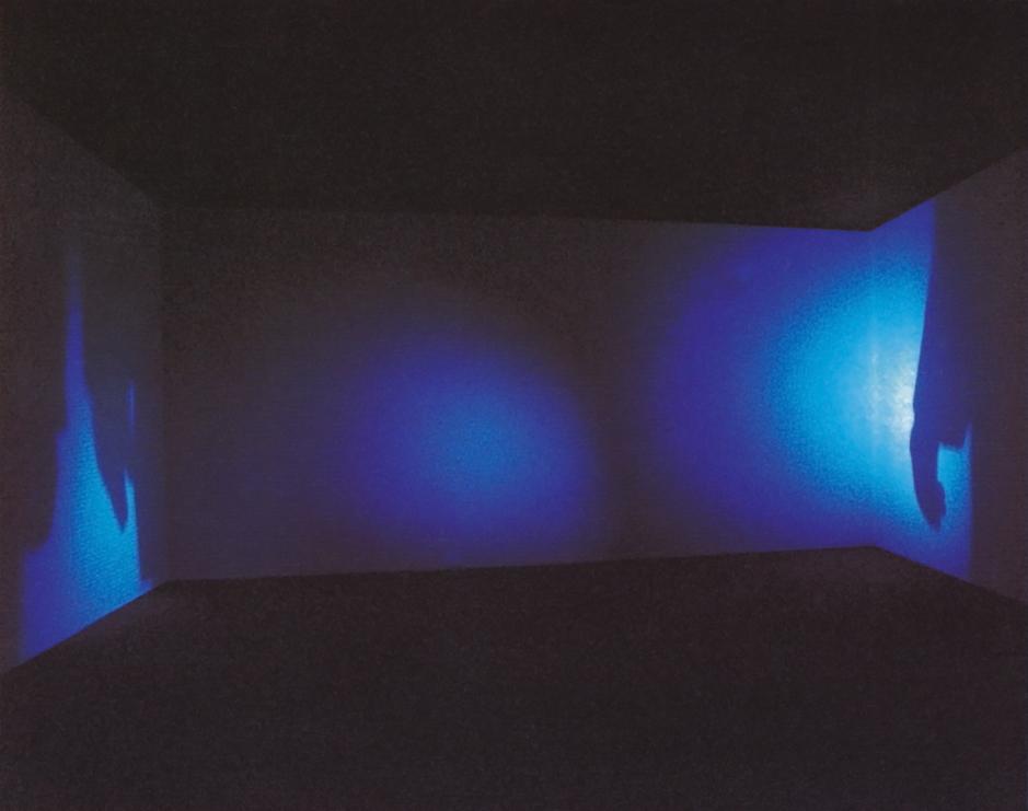 Nan Hoover, Movement from either direction, 1995, Kunst- und Ausstellungshalle der Bundesrepublik Deutschland, Bonn, Raumansicht.