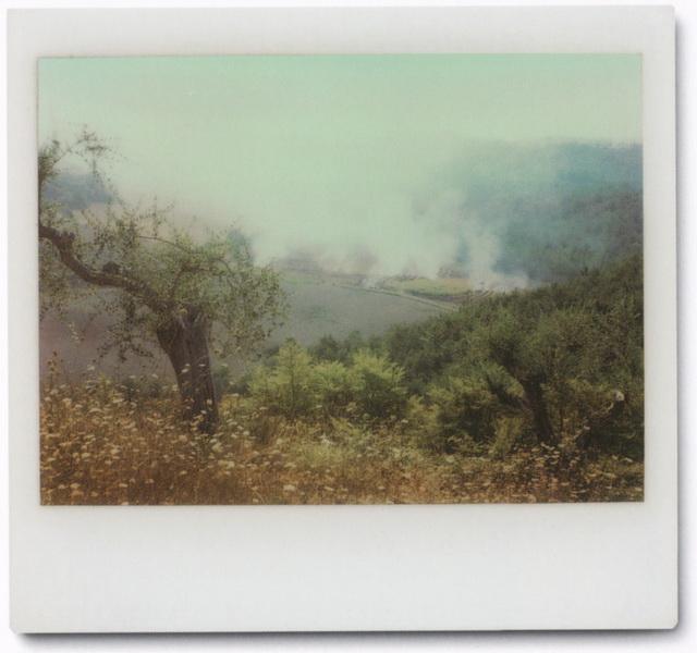 Abb. 2: Andrei Tarkowski, (Polaroid), 1984.