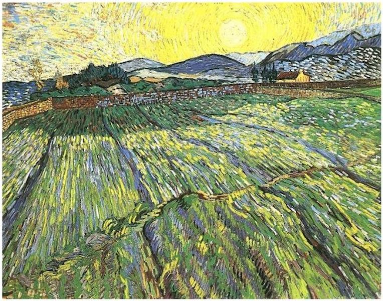 Vincent van Gogh, Umfriedetes Feld mit jungem Korn bei Sonnenaufgang, November 1889, Öl auf Leinwand, 71 x 90,5 cm, F 737, Privatsammlung.
