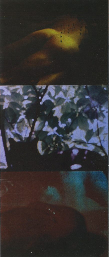 Fig. 2: Carolee Schneemann, Fuses, 1964–1966, Selfshot 16 mm film, color, silent, 30 min. Digital Video stills.
